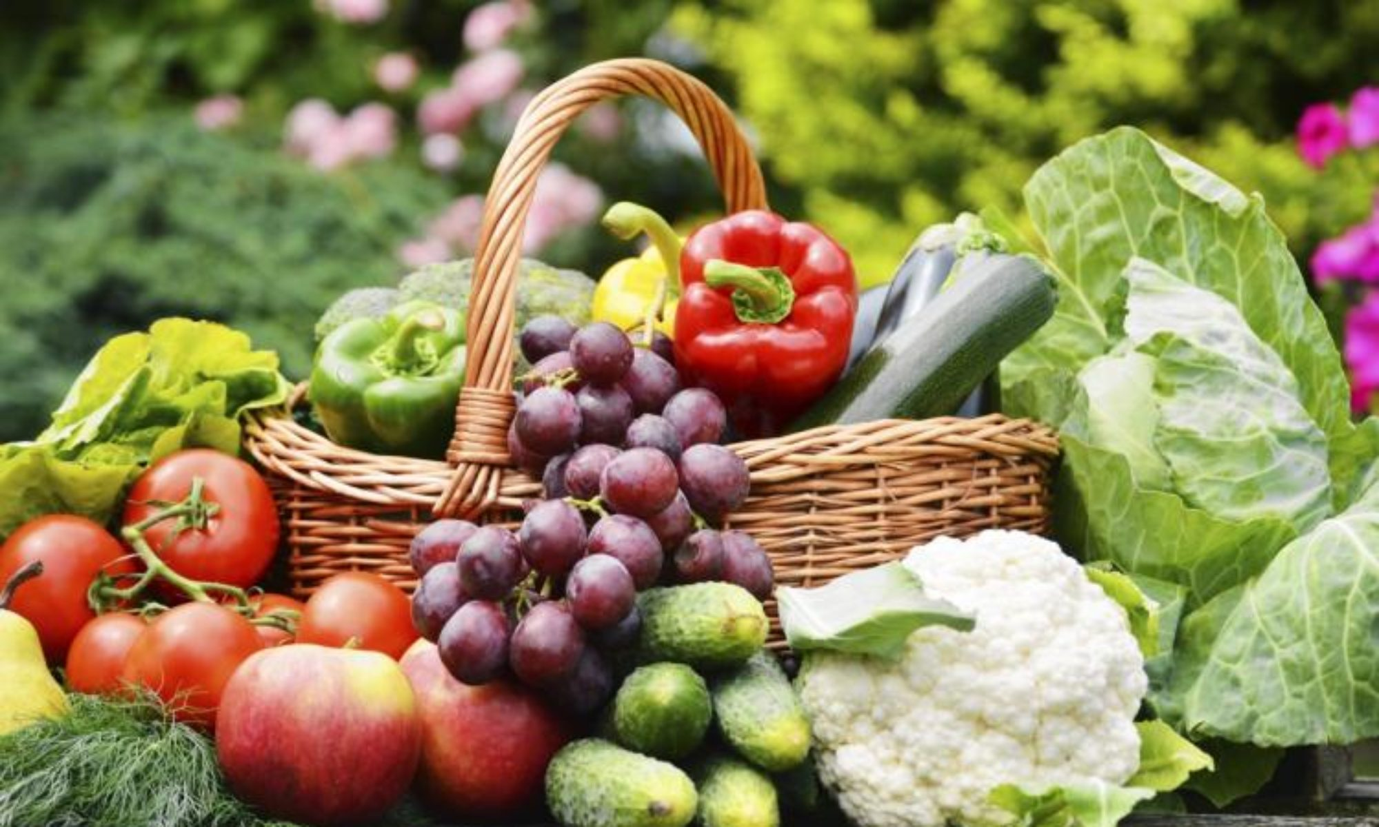 VISIT THE FRESH & LOCAL FARM OUTLET
